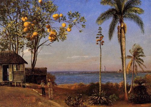 A View in the Bahamas, 1879 by Albert Bierstadt