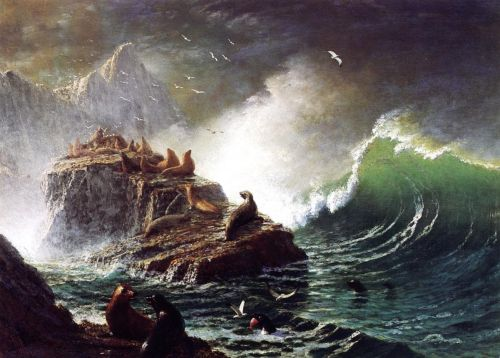 Seals on the Rocks, Farallon Islands, 1872-1873 by Albert Bierstadt