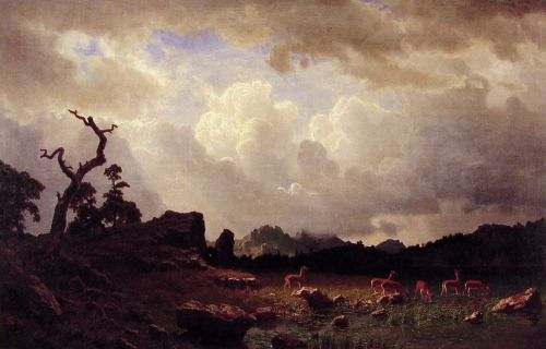Thunderstorm in the Rocky Mountains, 1859 by Albert Bierstadt