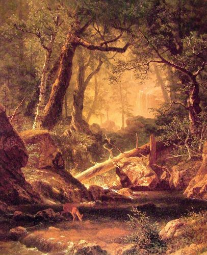 White Mountains, New Hampshire, 1863 by Albert Bierstadt