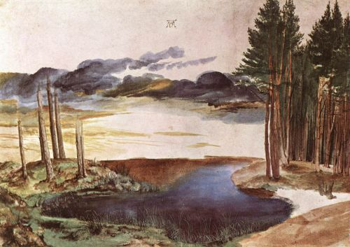Pond in the Woods by Albrecht Dürer