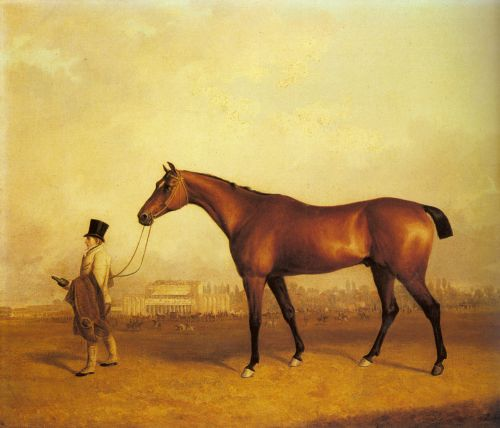 Emlius, Winter of the Derby, held by a Groom at Doncaster by John Ferneley