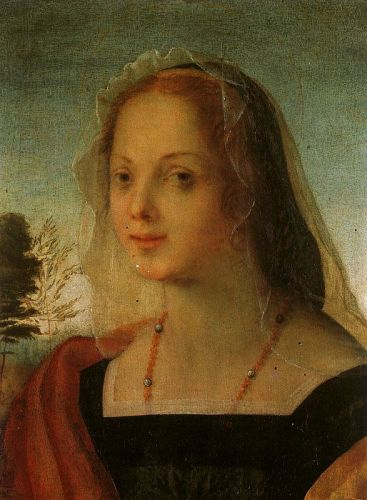 Portrait of a Young Woman by Rosso Fiorentino