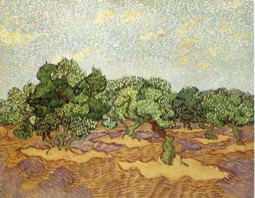 Olive Grove: Pale Blue Sky by Vincent van Gogh