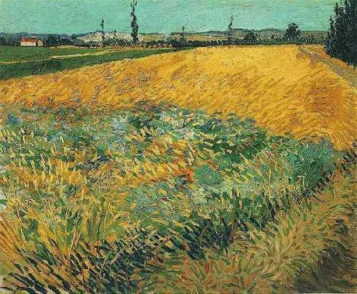 Wheat Field with the Alpilles Foothills in the Background by Vincent van Gogh
