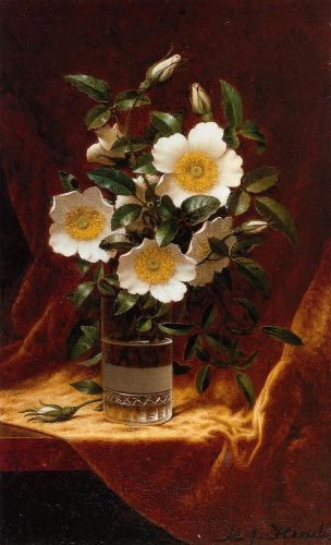 Cherokee Roses in a Glass by Martin Johnson Heade