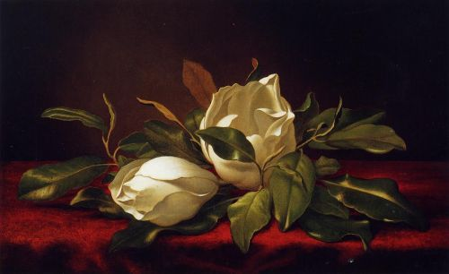Magnoliae Grandeflorae by Martin Johnson Heade