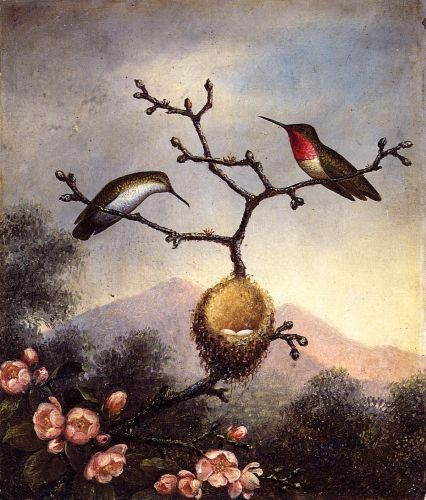 Ruby Throats with Apple Blossoms by Martin Johnson Heade