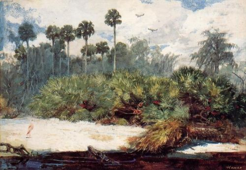 Florida Jungle by Winslow Homer