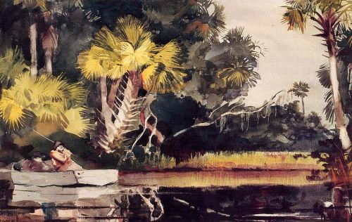 Homosassa Jungle by Winslow Homer