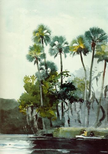 Homosassa River by Winslow Homer