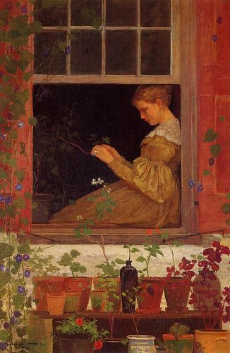 Morning Glories by Winslow Homer