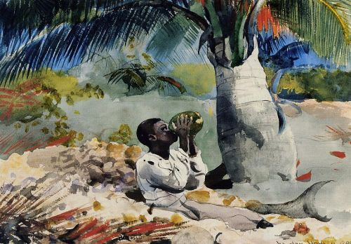 Under the Coco Palm by Winslow Homer