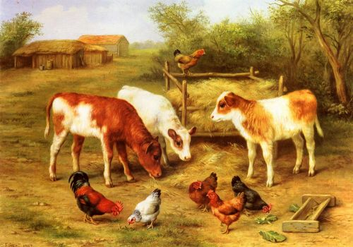 Calves and Chickens feeding in a Farmyard by Edgar Hunt