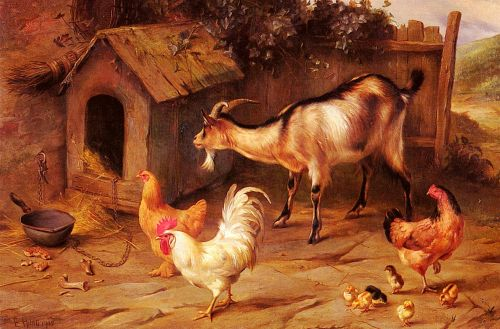 Fowl, Chicks And Goats By A Dog Kennel by Edgar Hunt
