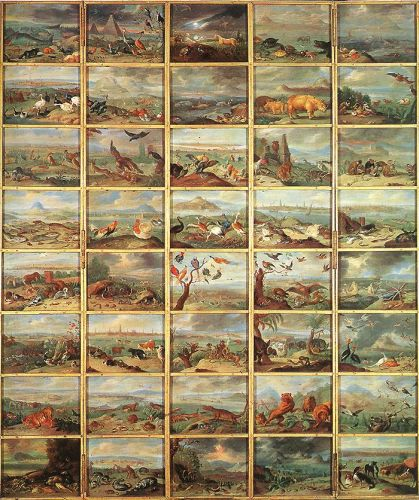 The Animals by Jan van Kessel