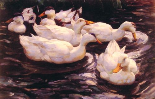 Six Ducks in the Pond by Alexander Koester
