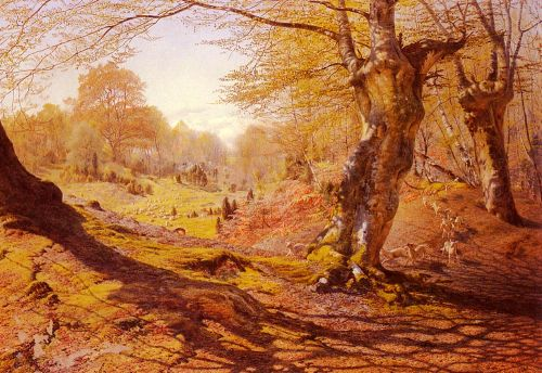 Seasons In The Wood - Spring, The Outskirts Of Burham Wood by Andrew MacCallum