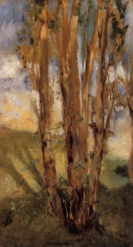 Study of Trees by Edouard Manet