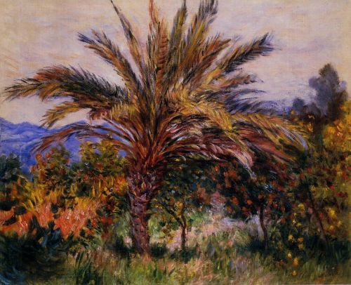 A Palm Tree at Bordighera, 1884 by Claude Monet
