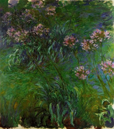 Agapanthus, 1914-1917 by Claude Monet