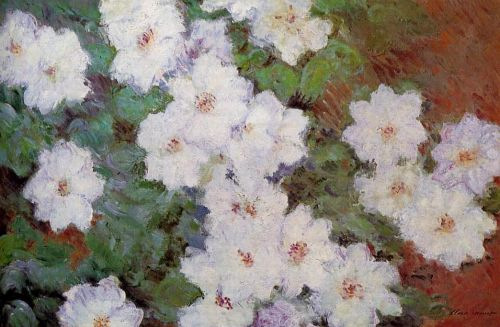 Clamatis, 1887 by Claude Monet