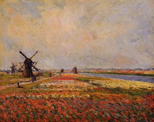 Fields of Flowers and Windmills near Leiden, 1886 by Claude Monet
