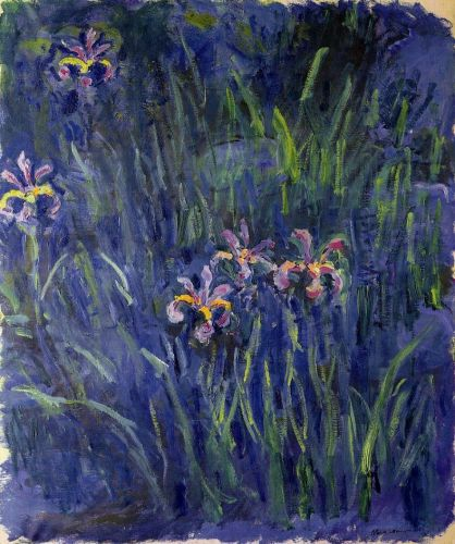 Irises, 1914-1917 by Claude Monet