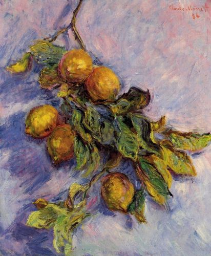 Lemons on a Branch, 1884 by Claude Monet
