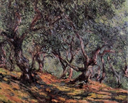 Olive Trees in Bordighera, 1884 by Claude Monet