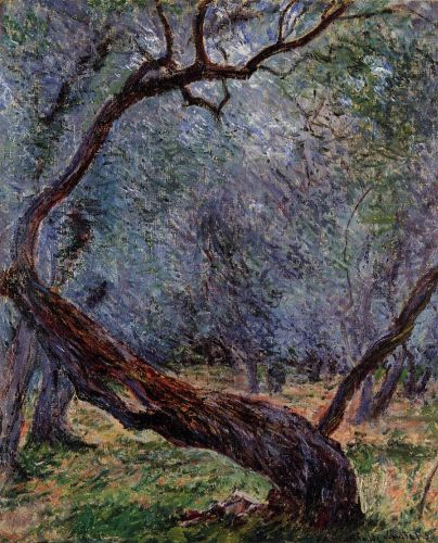 Study of Olive Trees, 1884 by Claude Monet