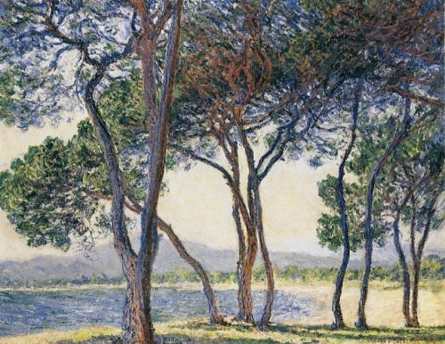 Trees by the Seashore at Antibes, 1888 by Claude Monet