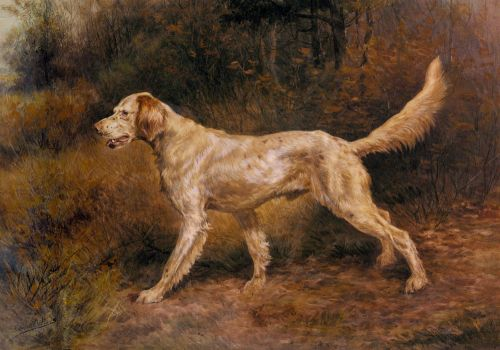 Commissioner, A Champion English Setter by Edmund Henry Osthaus