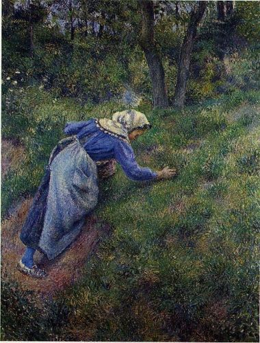 Peasant Gathering Grass, 1881 by Camille Pissarro