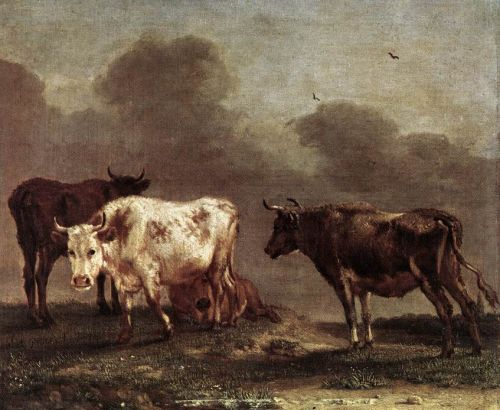 Cows in a Meadow by Paulus Potter