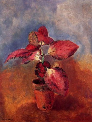 Begonia in a Pot by Odilon Redon