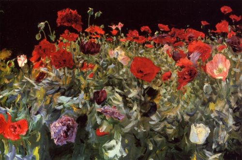 Poppies by John Singer Sargent