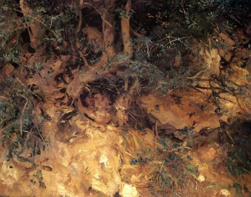 Valdemosa, Majorca: Thistles and Herbage on a Hillside by John Singer Sargent