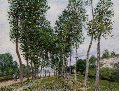 Lane of Poplars on the Banks of the Loing, 1892 by Alfred Sisley