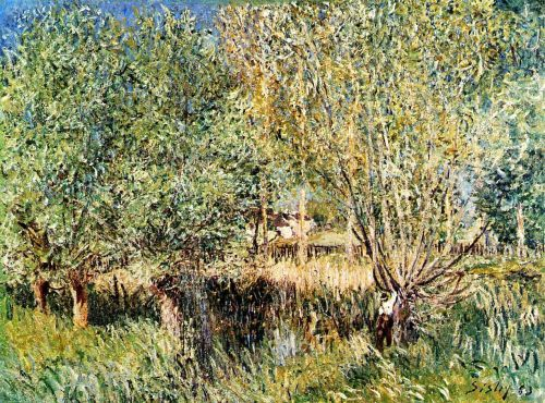 Willows on the Banks of the Orvanne, 1883 by Alfred Sisley