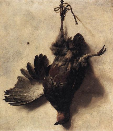 Dead Partridge by Jan Baptist Weenix