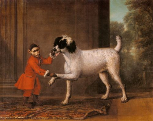 A Favorite Poodle And Monkey Belonging To Thomas Osborn by John Wootton